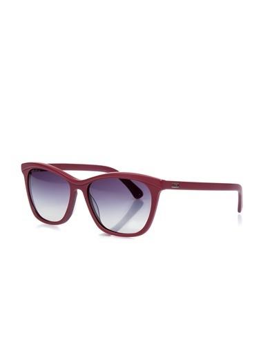 U.S.Polo Assn. Güneş Gözlüğü Renkli